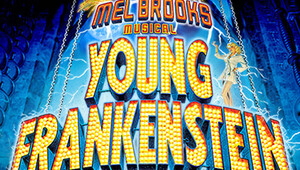 Young frankenstein 081710