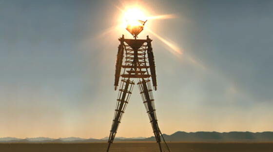1413122 burningman 062211