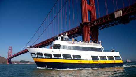San Francisco Bay Cruise Adventure COMP - $14.50 ($28 value)