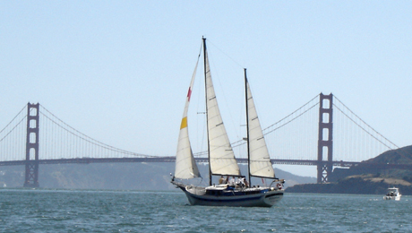 2-Hour Golden Gate Champagne or Mimosa Cruise From San Francisco Sailing Company $36.00 ($60 value)