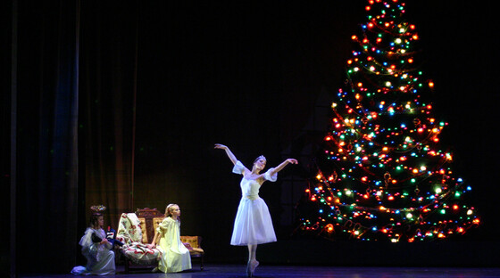 Nutcracker tree 110912