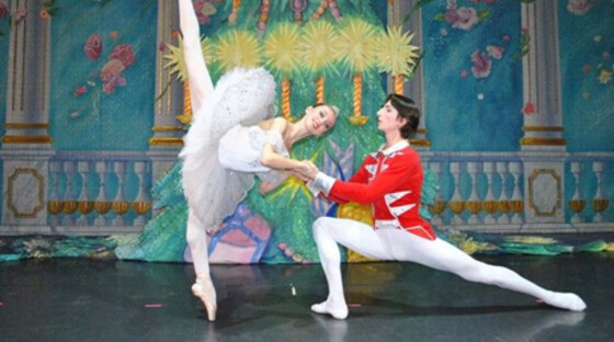 Russian nutcracker 20121