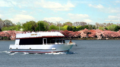 Cherry Blossom River Tours: Magnificent Views From the Water $12.00 ($26 value)
