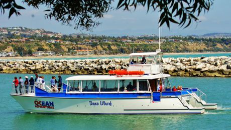 Wine Tasting Cruise on Dana Point Harbor $27.00 ($49 value)