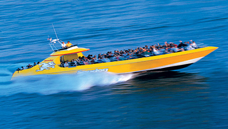Thrilling Seadog Speedboat Tour of Chicago's Scenic Lakefront $17.36 - $18.76 ($28.94 value)