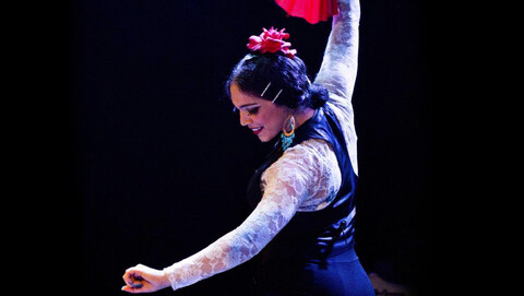 """The Ultimate Flamenco Dinner Show Experience"""