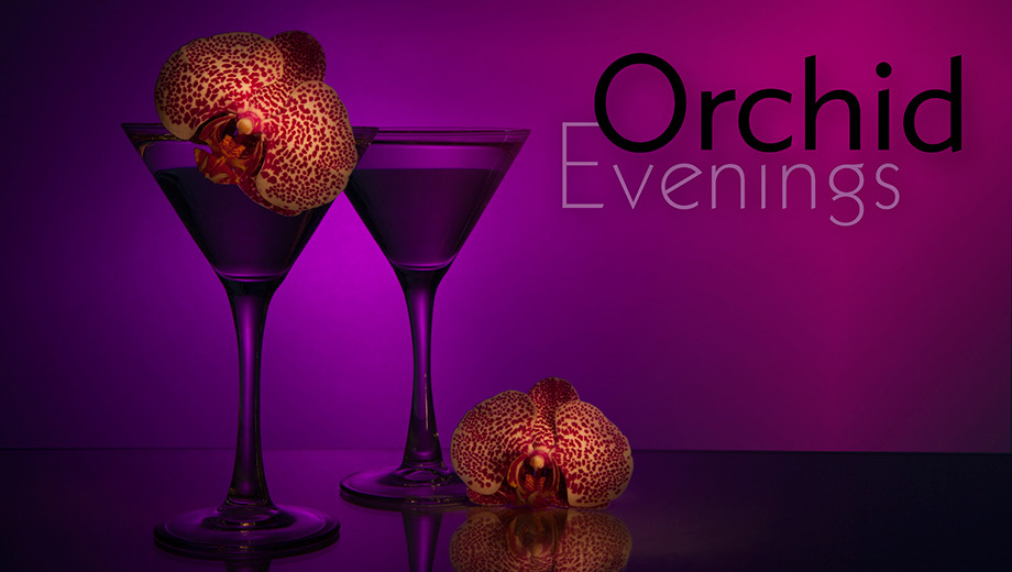 Music, Cocktails & Colorful Blooms at Romantic Orchid Evenings $18.00 ($30 value)
