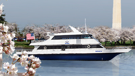 Cherry Blossom Happy-Hour Cruise with Tasty Views & Drinks $15.00 ($30 value)