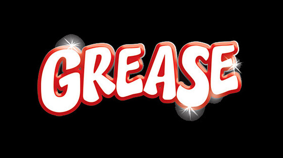 3098943 grease 072613