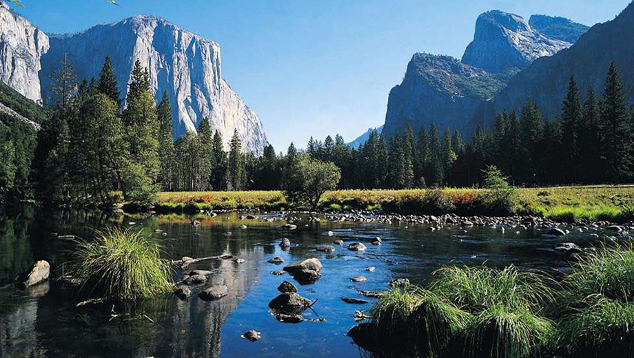 Explore Yosemite National Park's Breathtaking Views $74.50 ($149 value)