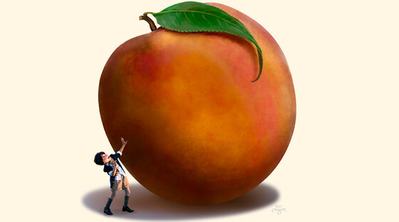 James giant peach 2 920