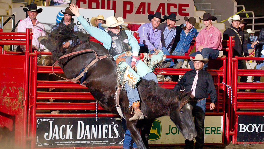 Enjoy Bronco-Bustin' Action at The Grand National Rodeo $14.00 ($23 value)
