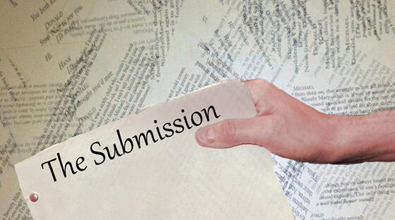 The submission 093013
