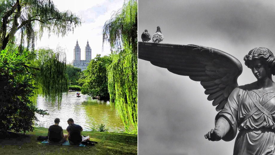 Central Park Photography Walking Tour: Get Tips From a Pro $20.00 ($45 value)