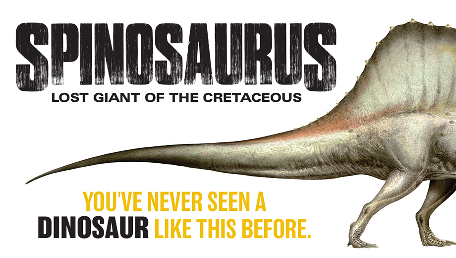 National Geographic Museum Explores the Lost Giant Spinosaurus and Other Secrets From This World and Beyond $6.50 ($11 value)