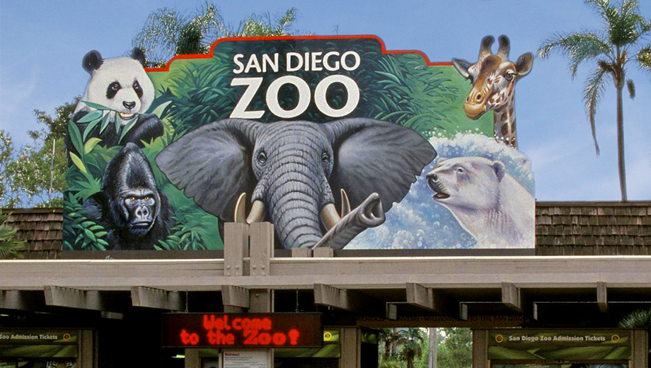 Image result for san diego zoo
