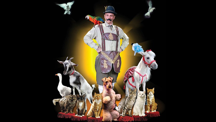 Popovich Comedy Pet Theater: Animal Circus Troupe at The Colonial $15.00 - $17.50 ($30 value)