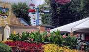 Dutch Wonderland Tickets