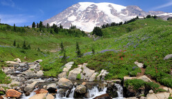 Mount Rainier National Park Tickets