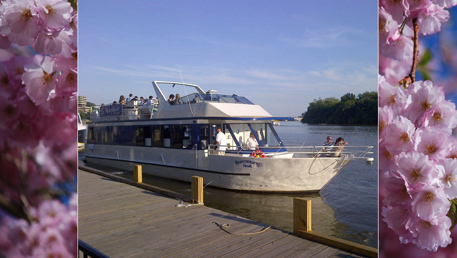 Cherry Blossom Cruise on the Potomac River $15.00 ($30 value)