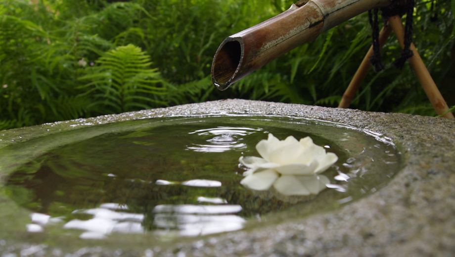 Japanese Friendship Garden Admission for Two $8.00 ($16 value)