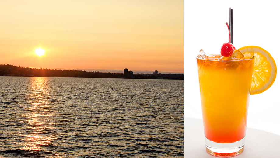 Explore Seattle Sights on Fun-Filled Happy Hour Cruise $34.00 ($56.6 value)