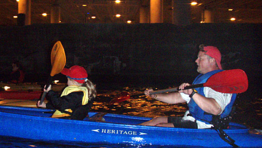 See the City Lights on Kayak Chicago's Night Paddle $27.50 ($55 value)