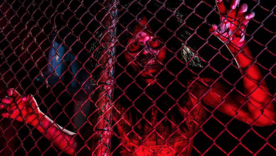 Zombie Outbreak Laser Tag: Realistic Survival Adventure $25.00 ($45 value)