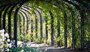 Descanso Gardens Tickets