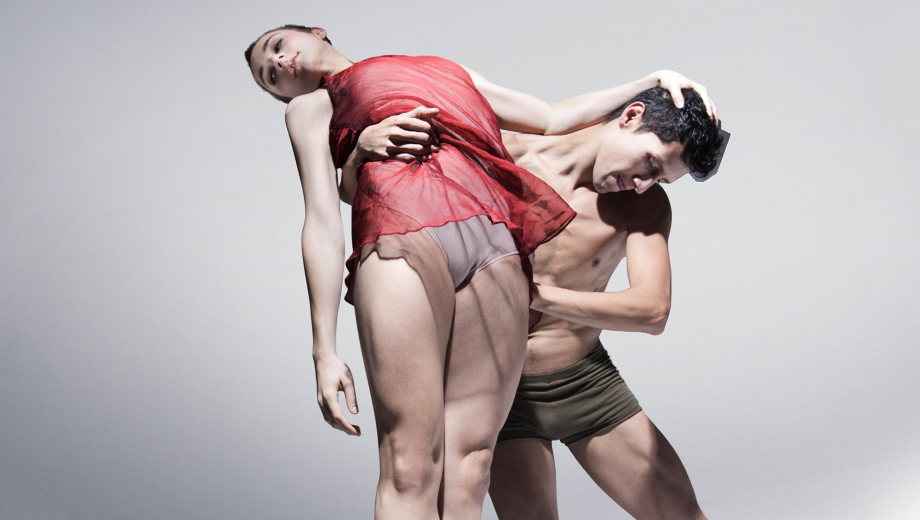 Brilliant, Sensual Mexican Contemporary Dance: Tania Perez-Salas Compania de Danza $37.50 ($75 value)
