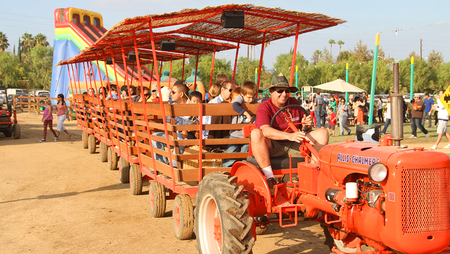 Haunted Trails, Corn Mazes and a Pumpkin Patch: Halloween Harvest Festival $16.00 - $24.00 ($26 value)