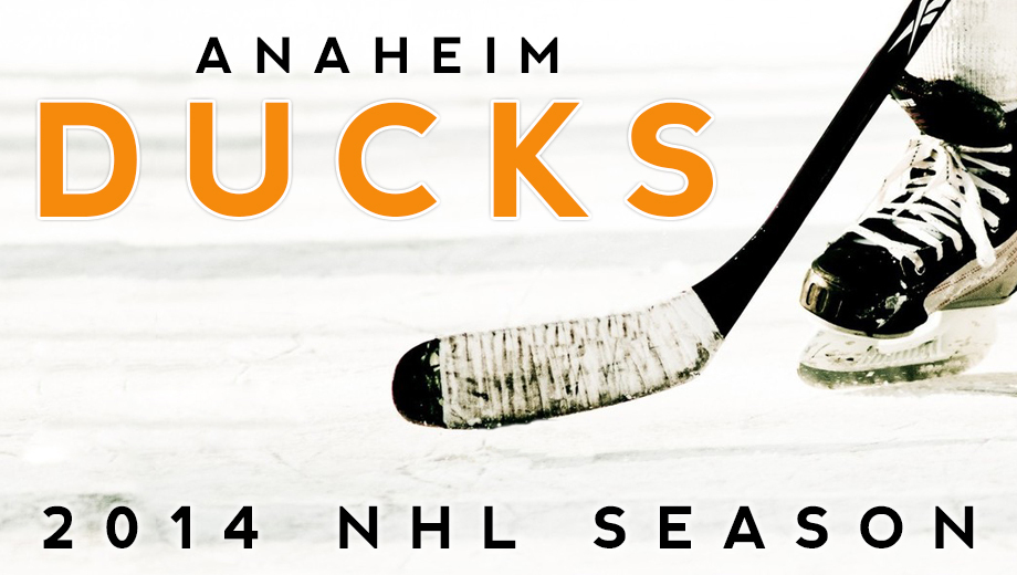 Anaheim Ducks Hockey: Drop the Puck on Fast-Paced Action $24.15 - $72.45 ($37 value)