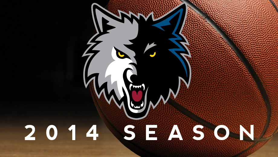 Minnesota Timberwolves NBA Basketball Action $6.00 - $60.00 ($13 value)