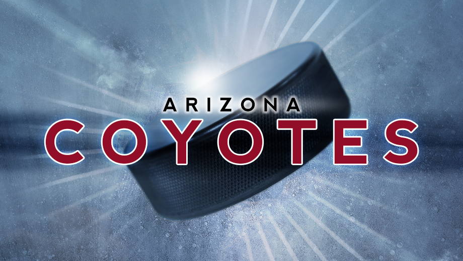 Arizona Coyotes: High-Flying NHL Action & Big Hits in the Desert $40.00 ($70 value)