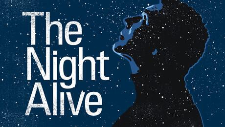 """The Night Alive"""