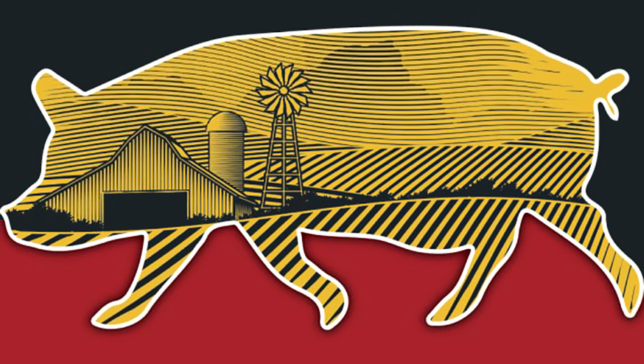 """Animal Farm"": Stage Adaptation of George Orwell's Masterpiece, Set in Appalachia @ New Hazlett Theater Center for Performing Arts 