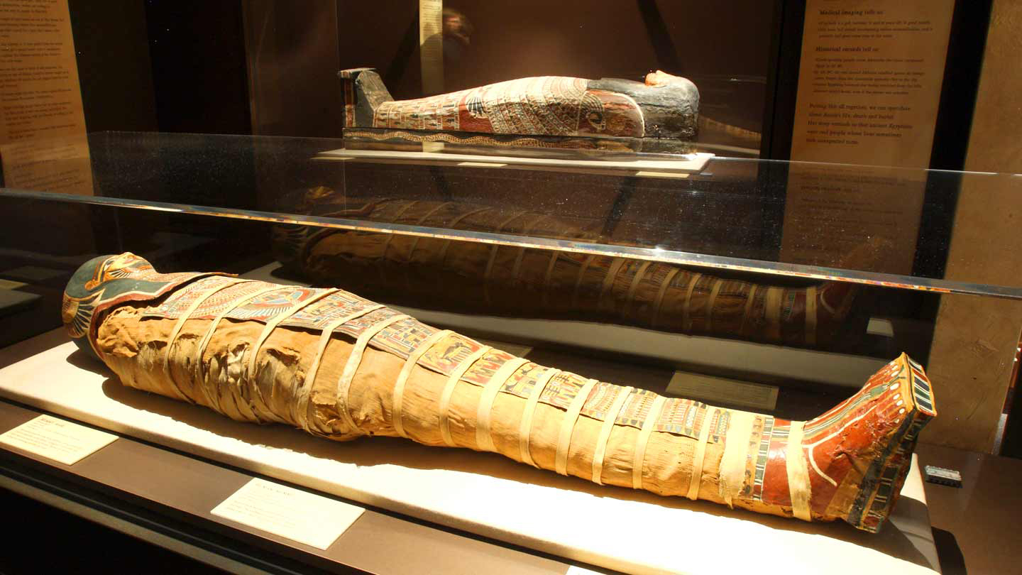 Meet Mummies and Explore Egypt at The Franklin Institute $12.47 ($24.95 value)