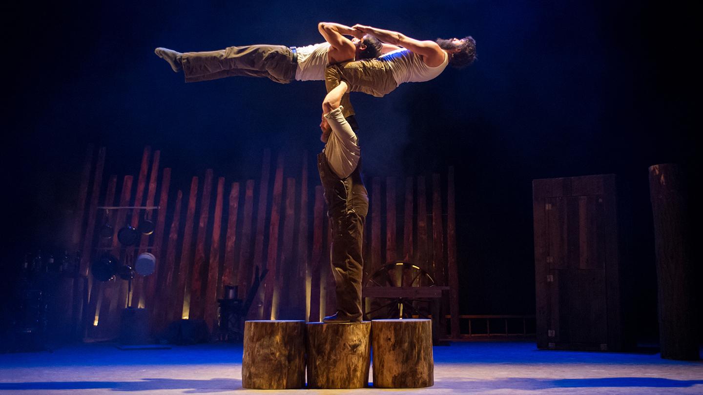 Cirque Alfonse's