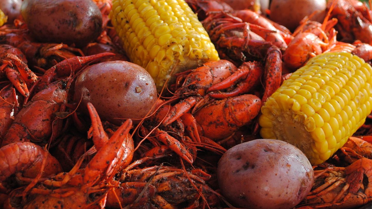 Mardi Gras Crawfish Boil: Live Music, Food & Drinks COMP - $21.10 ($15 value)