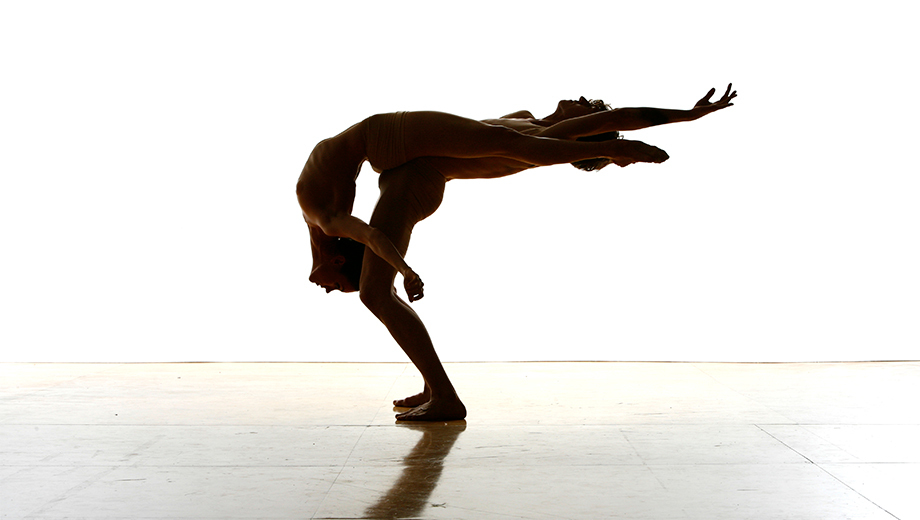 Exciting Modern Ballet: Dance Theatre of SF $20.00 ($40 value)