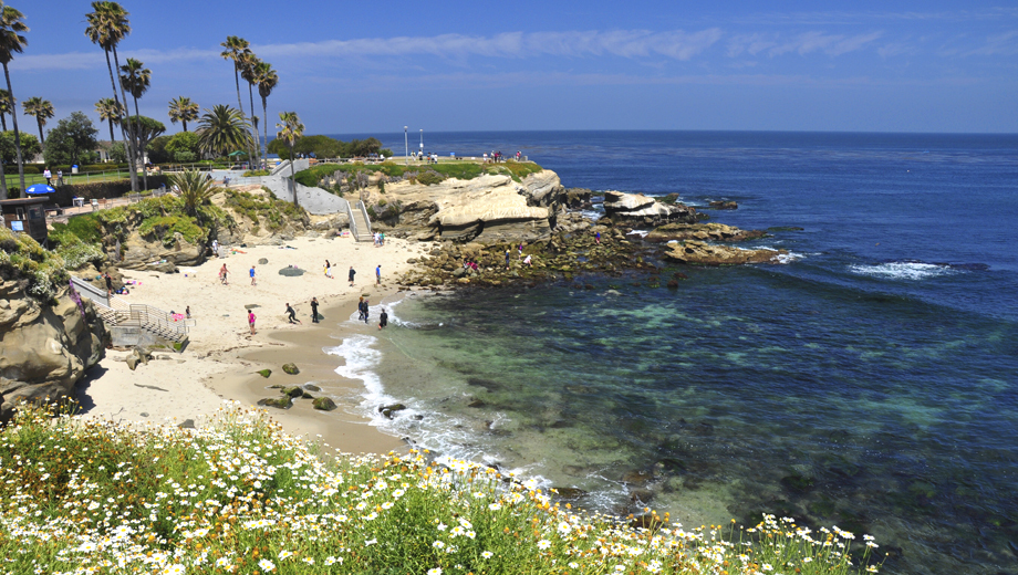Take a Scenic Ride on the La Jolla Freefall Bike Tour $24.00 ($49 value)