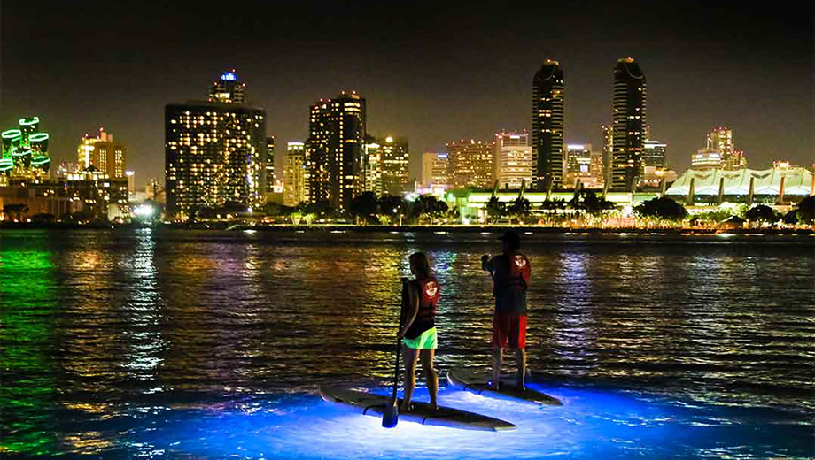 Stand-Up Paddle Board Night Tour: