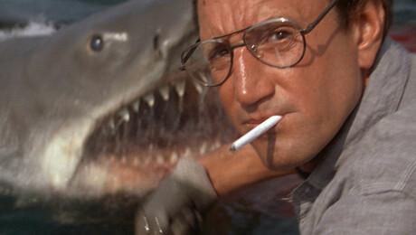 """Jaws"": 40th Anniversary Screening"
