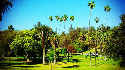 Elysian Park Tickets