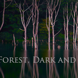 "Neil LaBute's ""In a Forest, Dark and Deep"