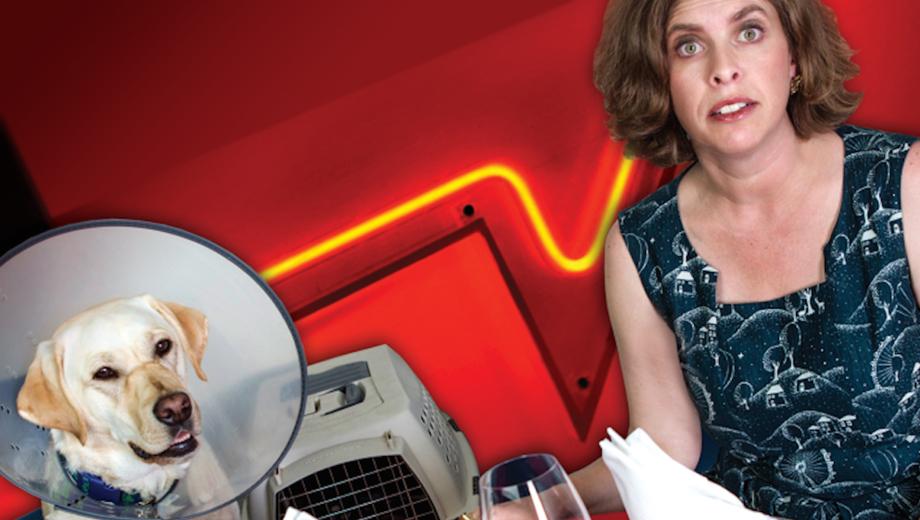 Lisa Rothman's Fringe Comedy