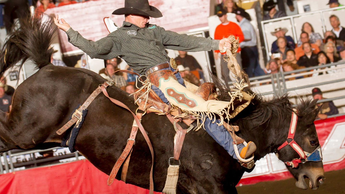 Rodeo Action, BBQ and More Western Fun at The Grand National Rodeo $14.00 ($23.65 value)