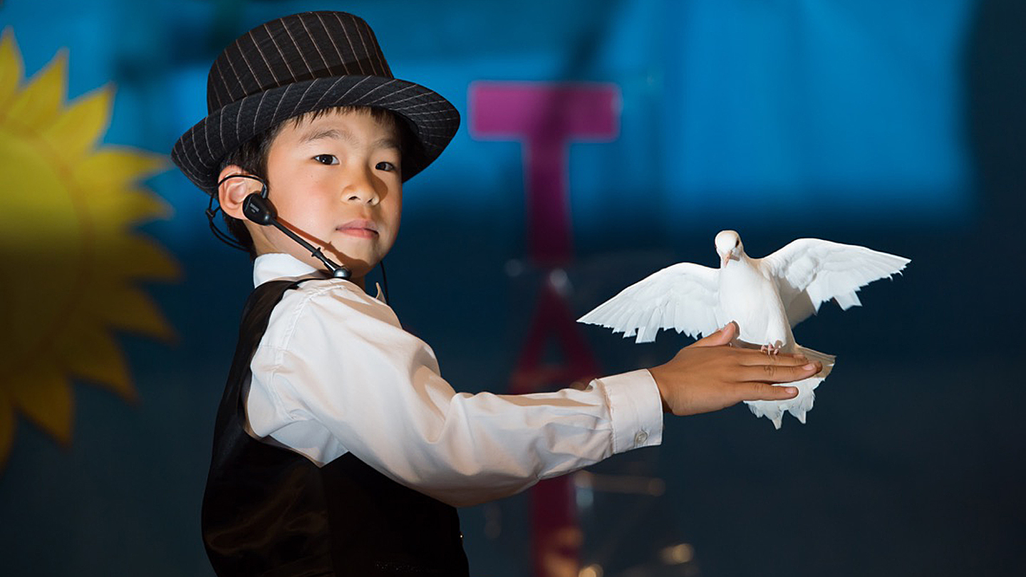 Magic and Dinner Show With Dan Chan at Dynasty Seafood Restaurant $10.00 - $60.00 ($20 value)