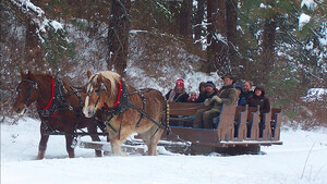 Leavenworth Sleigh Ride and Christmas Lights Festival