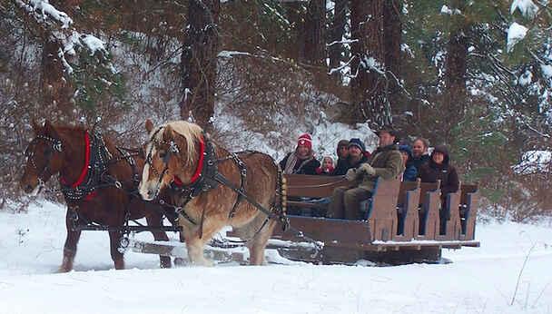 Leavenworth Sleigh Ride and Christmas Lights Festival